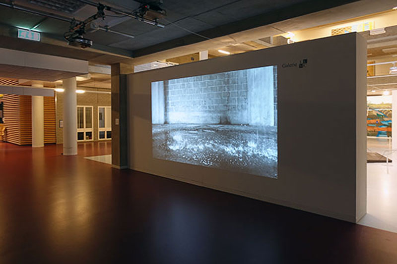 Video 'Downstream', in collectie van Museum De Lakenhal, in LUMC Galerie tijdens de tentoonstelling 'Natuurlijk' in 2017.