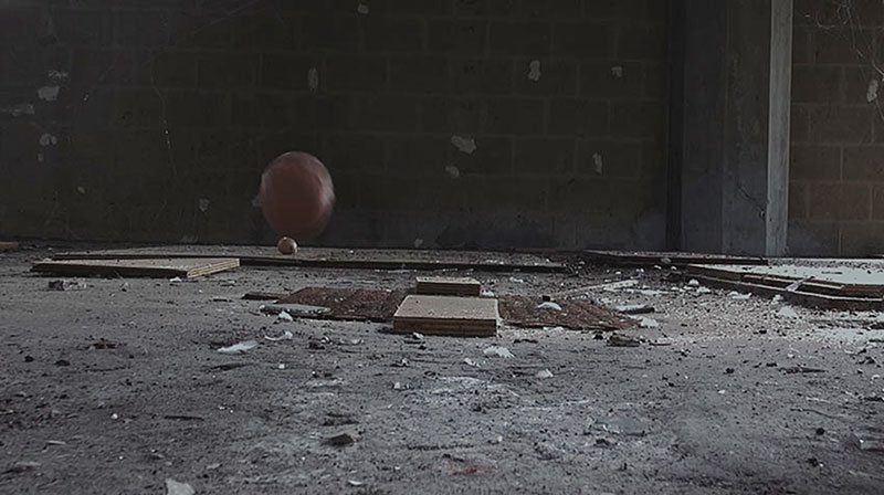 Shellshock uit de serie Natures Mortes van Inge Reisberman