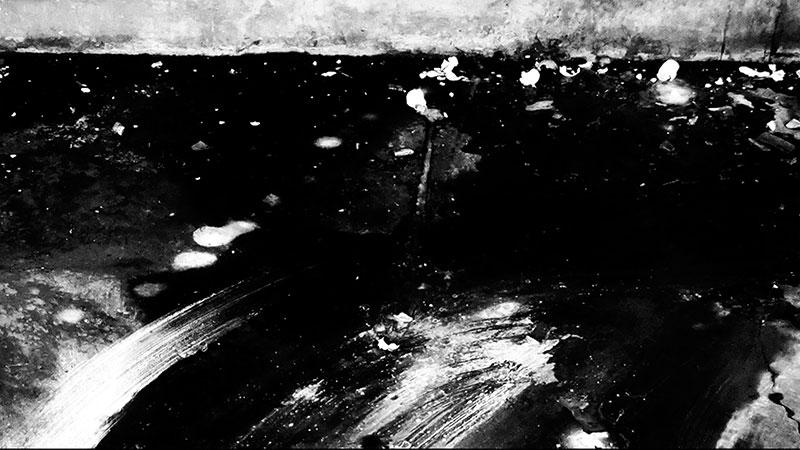 Inge Reisberman-videostill-natures mortes